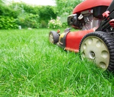 Best Rear Engine Riding Mowers