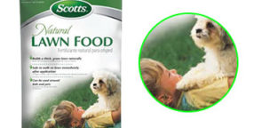 natural lawn fertilizers