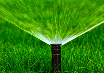 Best Lawn Sprinkler Heads
