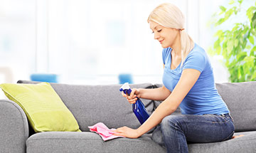 Best Upholstery Cleaner Types
