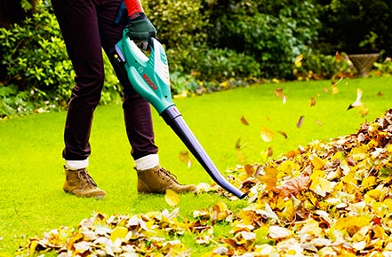 How to Use Leaf Blower