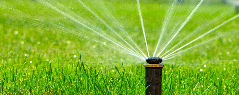 The Ultimate Cheat Sheet on How to Replace Sprinkler Head