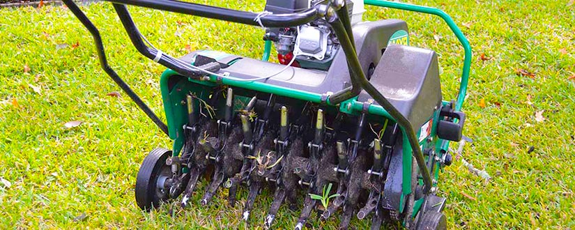Best Time to Aerate Lawn: Garden Maintenance Tips