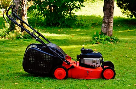 When Is The Best Time To Buy A Lawn Mower