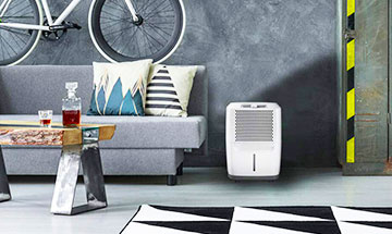 Dehumidifiers are as important as any appliances at home