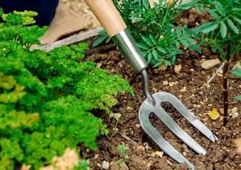 Finding The Best Garden Forks In 2021