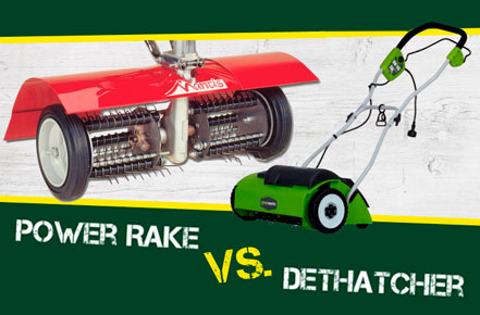 Power Rake vs. Dethatcher