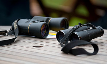 best binoculars under 300